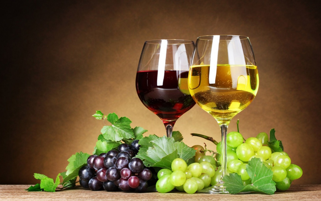 Лозы и вина Прованса